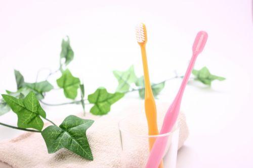 同棲中の歯ブラシ